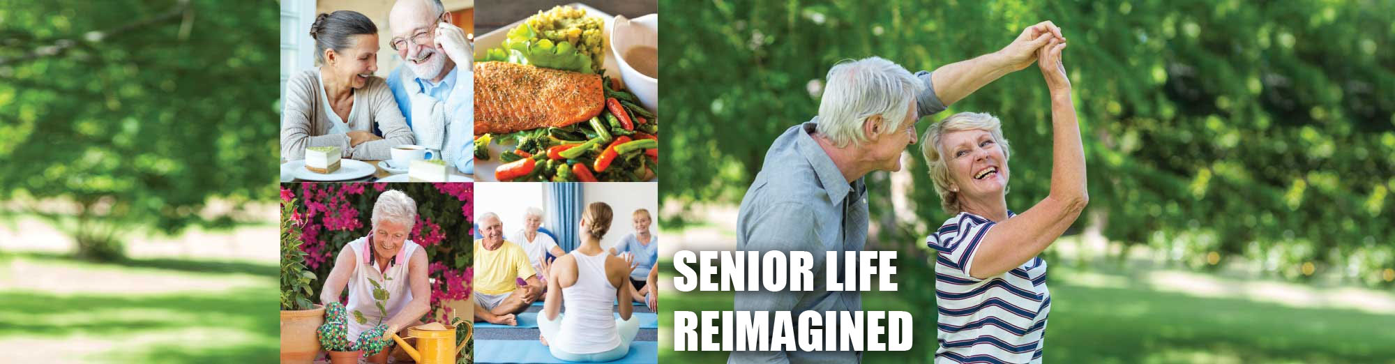 Assistd Living and Memory Care Facility Araviall Senior Living Options